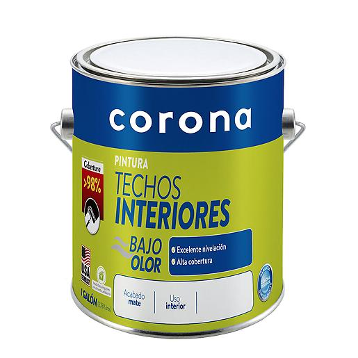 Pintura Techos Interiores Blanco